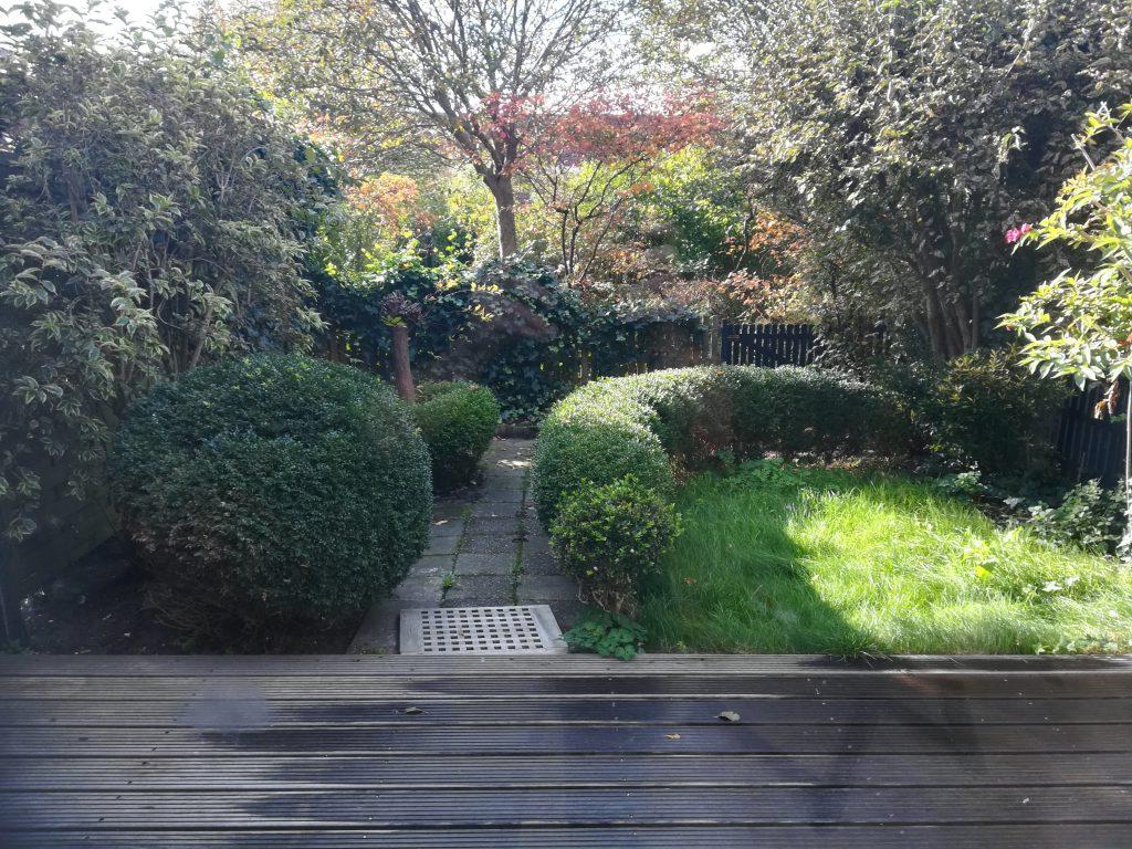 De tuin, in de oude situatie