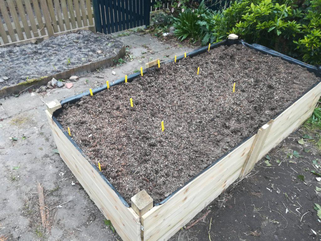 Eind maart, de eerste zaadjes zijn geplant